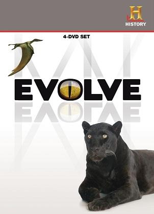 تکامل۲
